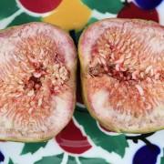 Detail einer aufgeschnittenen Frucht, aus: Das Fruchtfleisch der Feigen