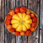 Herbstlicher Dekorationskorb mit Zierkürbis und Physalis, aus: Die Farben des Herbstes konservieren